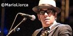 Elvis Costello, cronica concierto