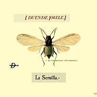 Duende Josele, disco la Semilla. Comentario disco