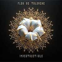 Flor de Toloache disco Indestructible
